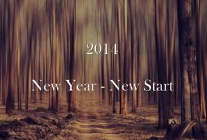 2014 New Year New Start